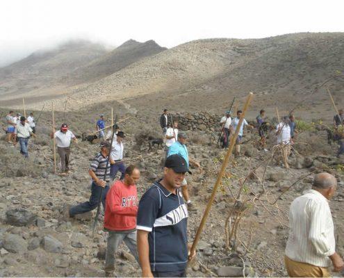 SGI Fuerteventura