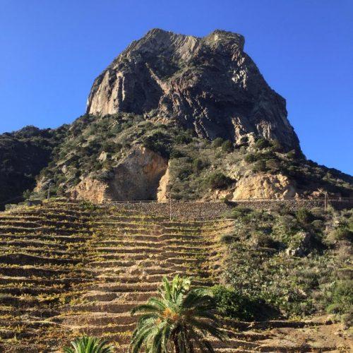 Figura 1: Roque Cano, palmeras y bancales.